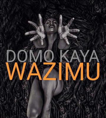 Download Mp3 | Domo Kaya – Wazimu
